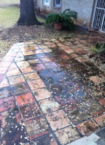 Before Cleaning Saltillo Tile